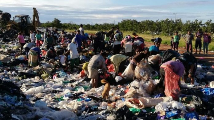 Colombianos comiendo basura