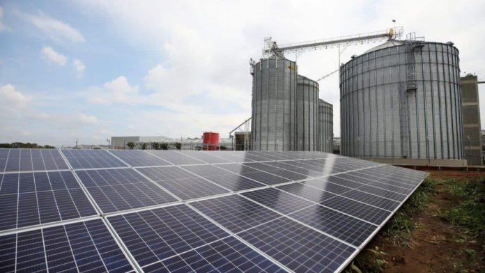 Granja Solar de Promigas, CEO y Colombina