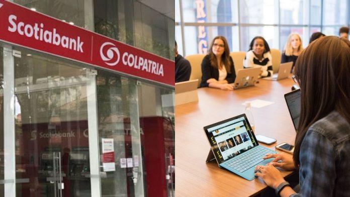 Ofertas de trabajo quedarán abiertas para recién graduados en Scotiabank Colpatria