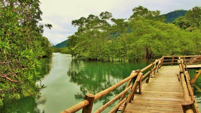 Ecoturismo en Colombia