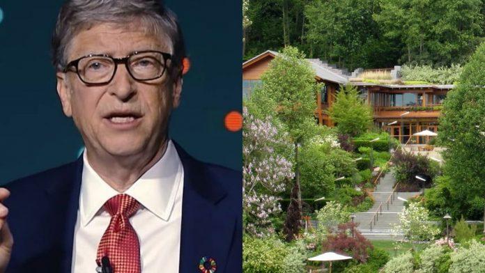Bill Gates, cofundador de Microsoft pasó de la tecnología a la agricultura