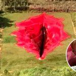 Escultura de vulva gigante en Brasil