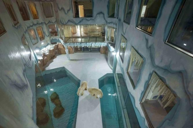 Los activistas de los derechos de los animales han instado a los huéspedes a mantenerse alejados del hotel. Crédito: Harbin Polarland.