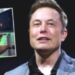 Elon Musk implanta chip en el cerebro de un mono