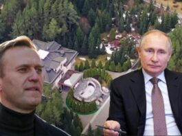 Navalny revela fotos de la mansión de Putin
