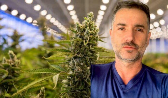 Es hora de exigir que se regule el cannabis de uso adulto.