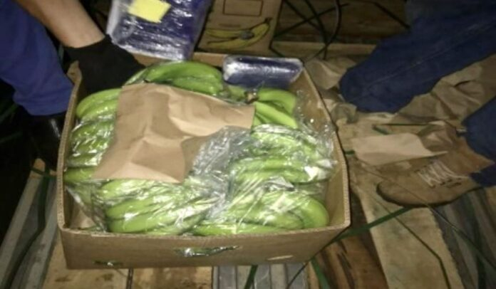 La droga estaba oculta en cajas de plátano
