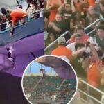 La multitud aplaudió con alivio cuando el gato rebotó en la bandera antes de aterrizar suavemente en el nivel de asientos inferior